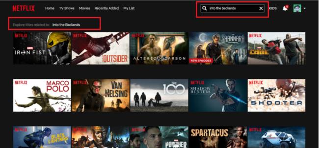 Netflix restrictions